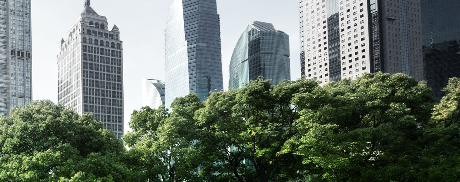 View of skyscrapers and trees