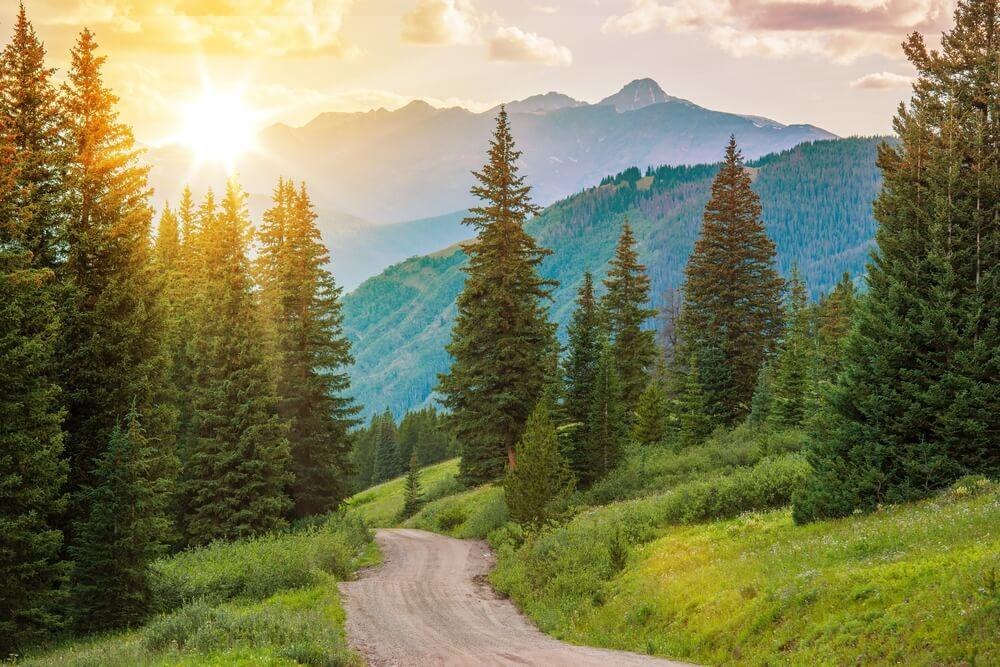 Mountain Landscape. Colorado Wilderness Backcountry Road