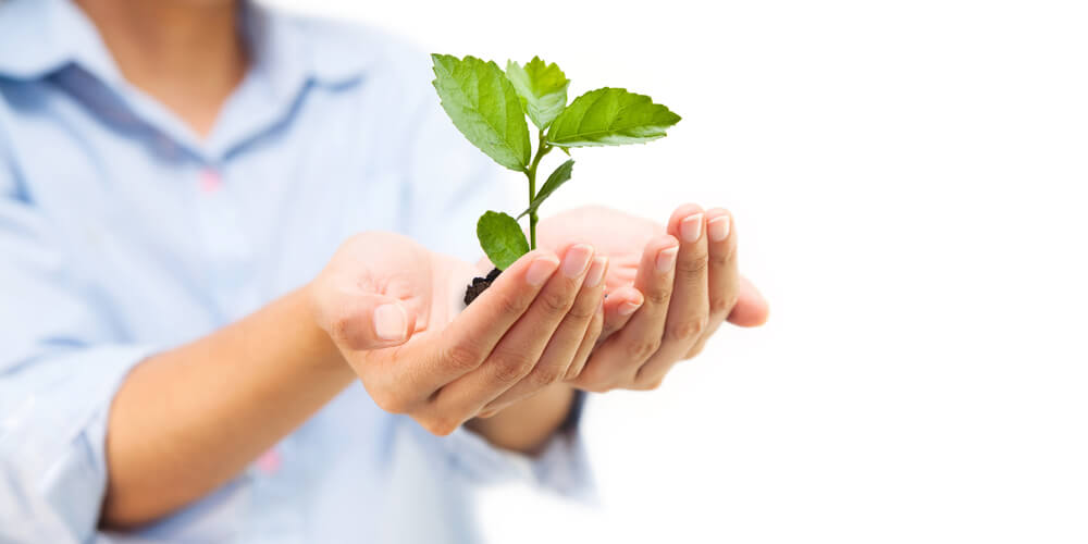 Go Green With Help From Managed Print Services, LaserCycle USA, Colorado